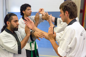 Wing Chun Techniek Training